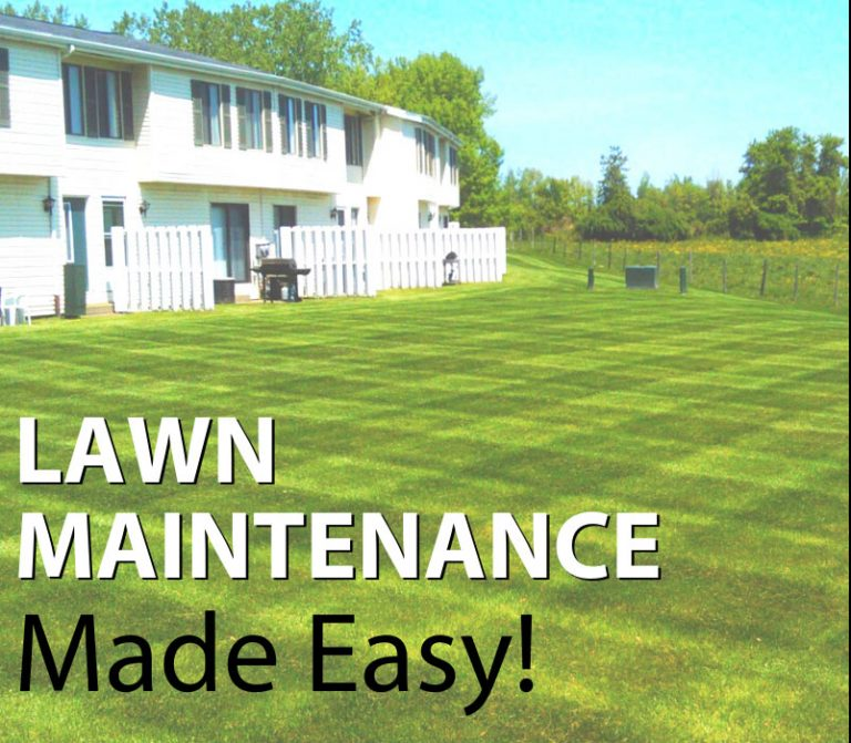 Lawn Maintenance Made Easy!