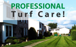 Professional Turf Care!