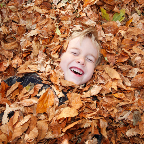 child in fall leaves on lawn